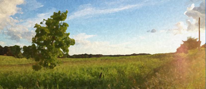 scenery2.jpg