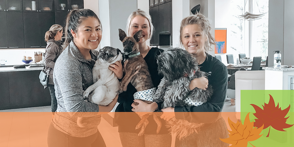 Yoga with Dogs! Fall Fling Sept. 26th