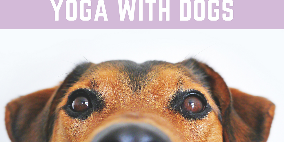 Yoga With Dogs April 18th