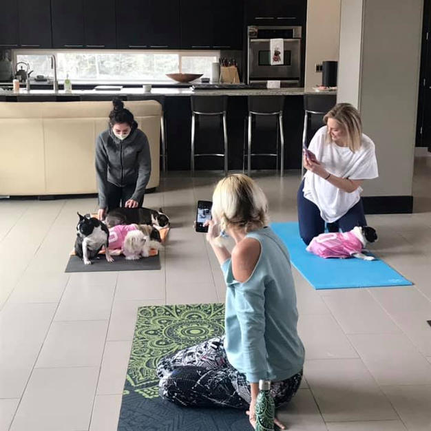 Yoga with Dogs!