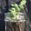 Thumbnail: WALL HANGING PLANT HOLDER