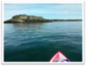 photo paddle ile notre dame.jpg