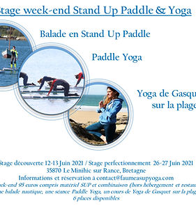 Stage SUP Paddle Yoga et Yoga.jpg