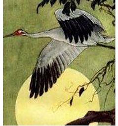soaring crane.jpg