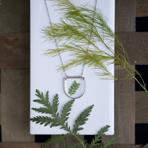 Silver D with Honey Locust Leaves