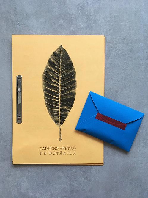 Caderno afetivo de botânica_ +UM Coletivo
