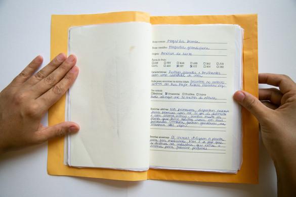 Caderno afetivo5.jpg