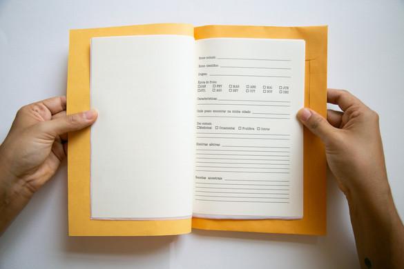 Caderno afetivo8.jpg