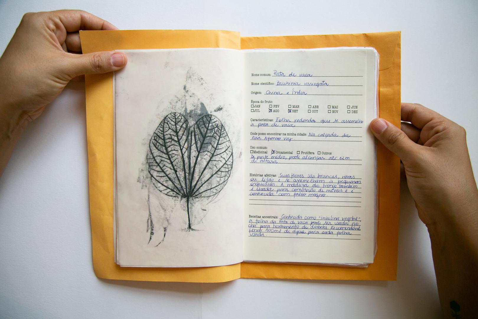 Caderno afetivo3.jpg