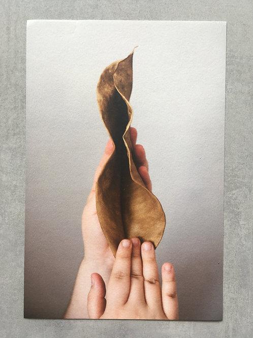 Manifesto vulva_ Maressa Andrioli