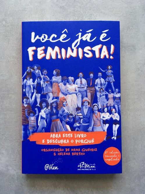 Você já é feminista_ Várias autoras