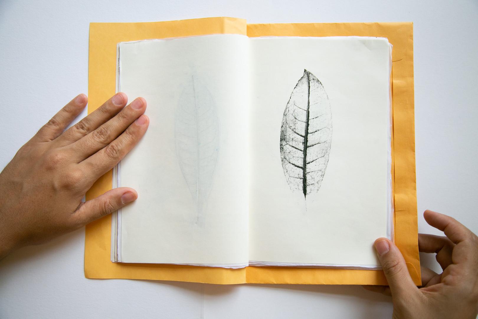 Caderno afetivo4.jpg