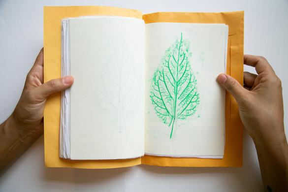 Caderno afetivo6.jpg