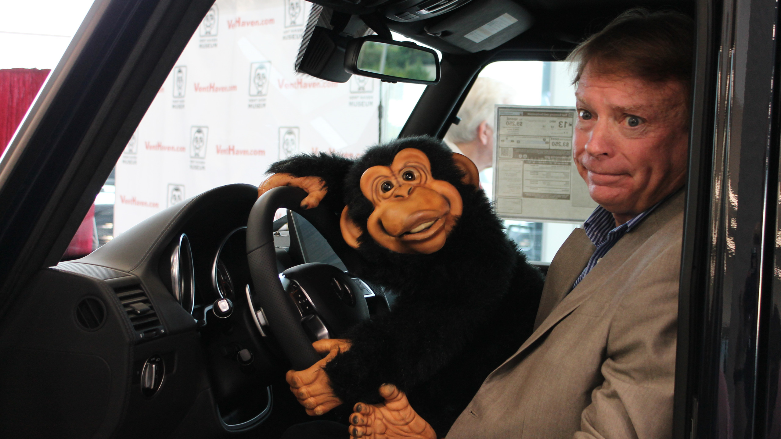 Monkey wants to drive the Mercedes