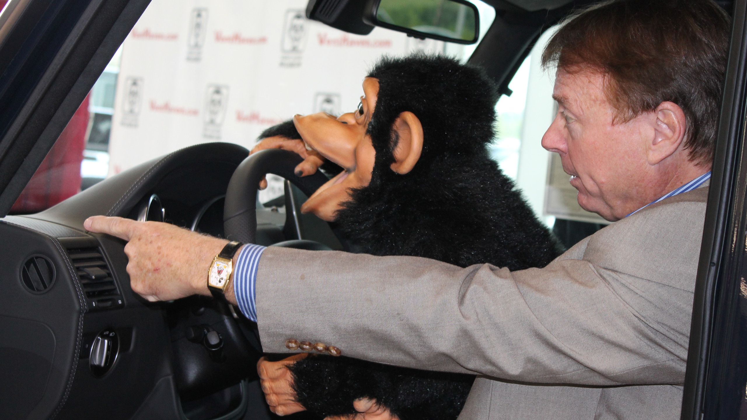 Keep your eye on the road, Monkey!