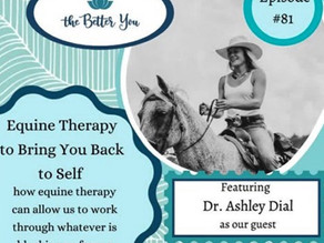 Equine Therapy To Bring You Back to Self