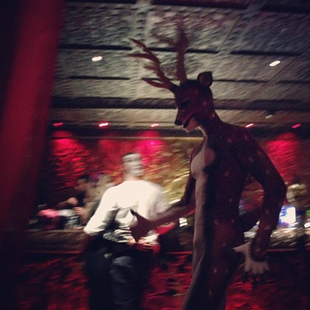 Deer - Hallowzeem 2014