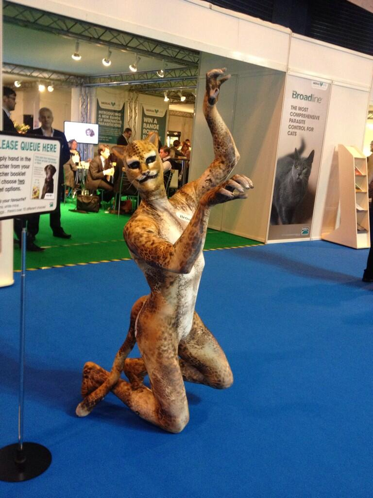 Catman.jpg