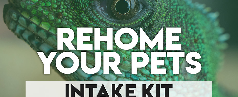 Rehome Your Pets