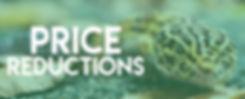 ES banners_REDUCTION.jpg