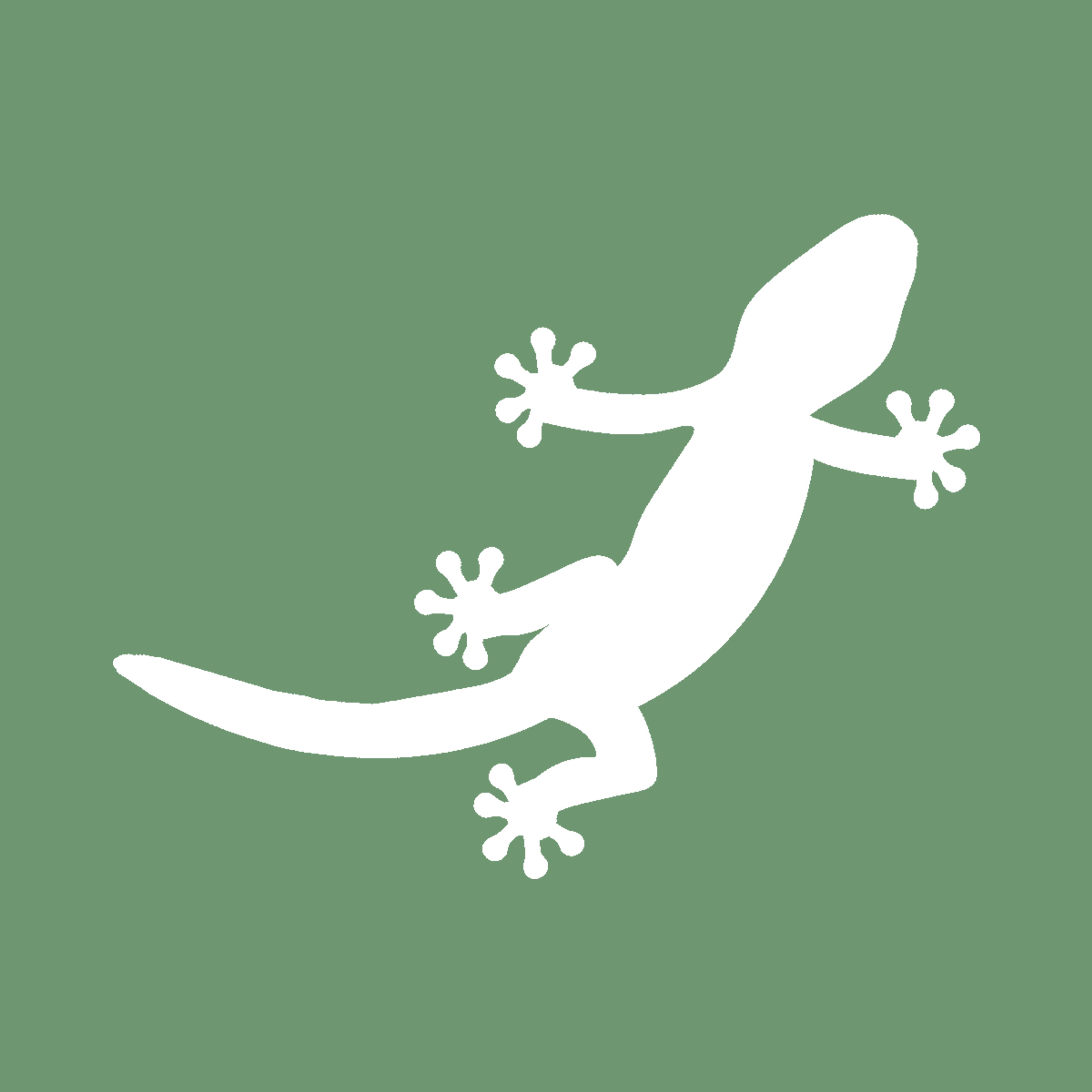 Leopard Gecko Care Guide