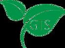 GTS-leaf-logo light background.png