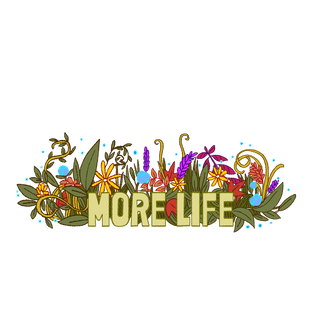 MORE-LIFE.png