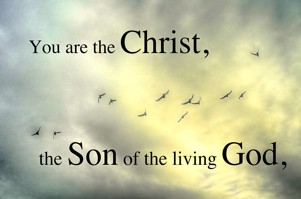 you are the christ.jpg