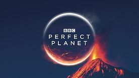 BBC PP.jpeg
