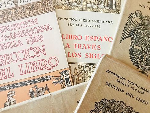 EL LIBRO.jpeg