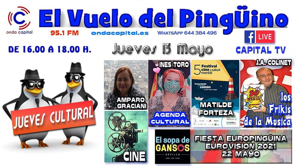 PANTALLA VUELO PINGUINO RADIO 13.05.2021