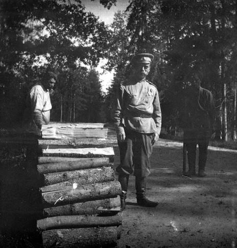 Tsarkoe Selo Captivity (18).jpg