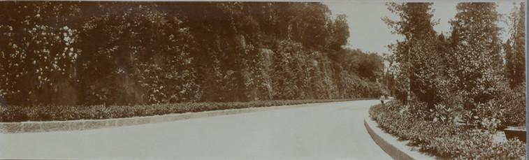 Album of Olga Nikolaevna 1913-1914421.jp