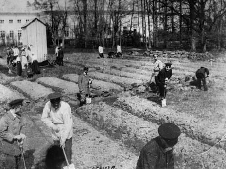 Tsarkoe Selo Captivity (64).jpg