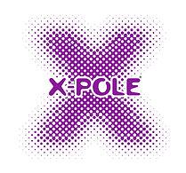 X-pole with X Pantone 2602 C 2018.jpg