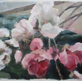 Magnolia's 1