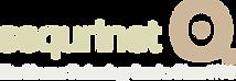 SeQurinet_logo.png