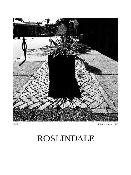 Planter - Roslindale Poster