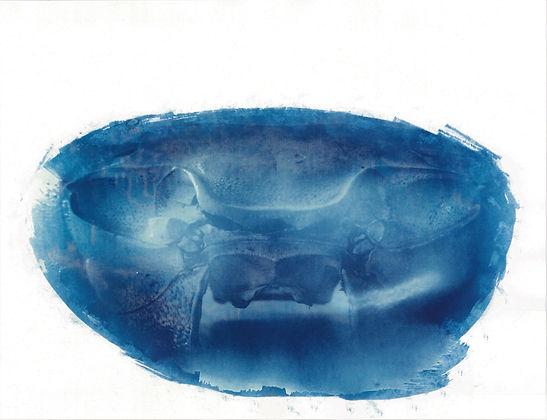 la mer morte 2.jpg