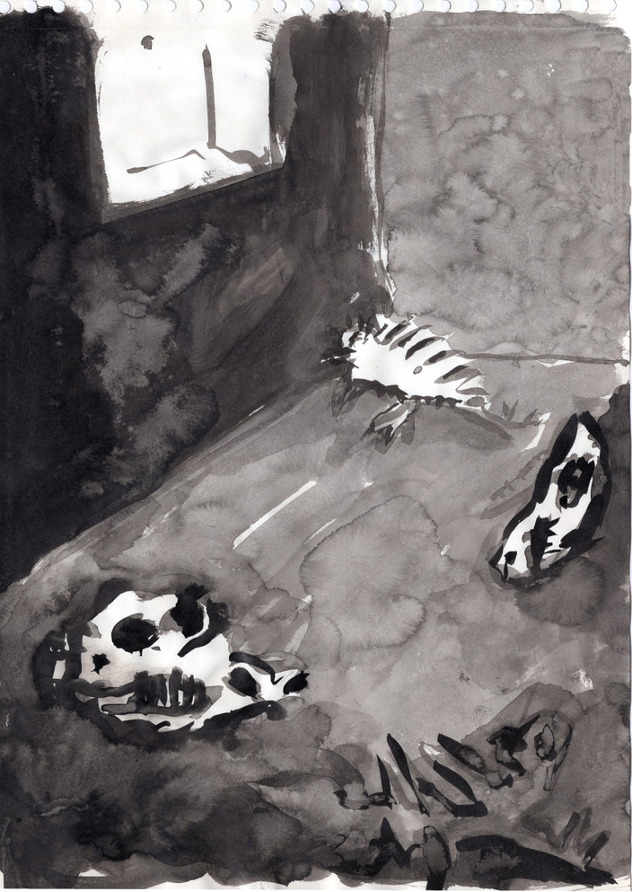 Le cagibi des espèces