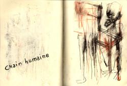 chair humaine#33