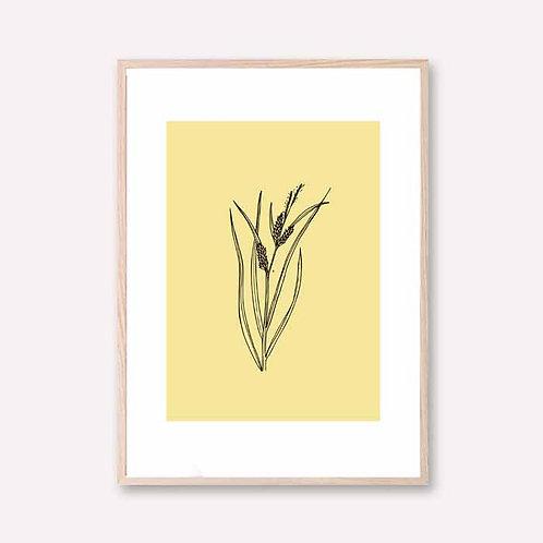 Yellow grain branch