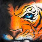 Kiev Tiger