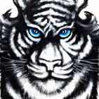 Bily Tiger Balm