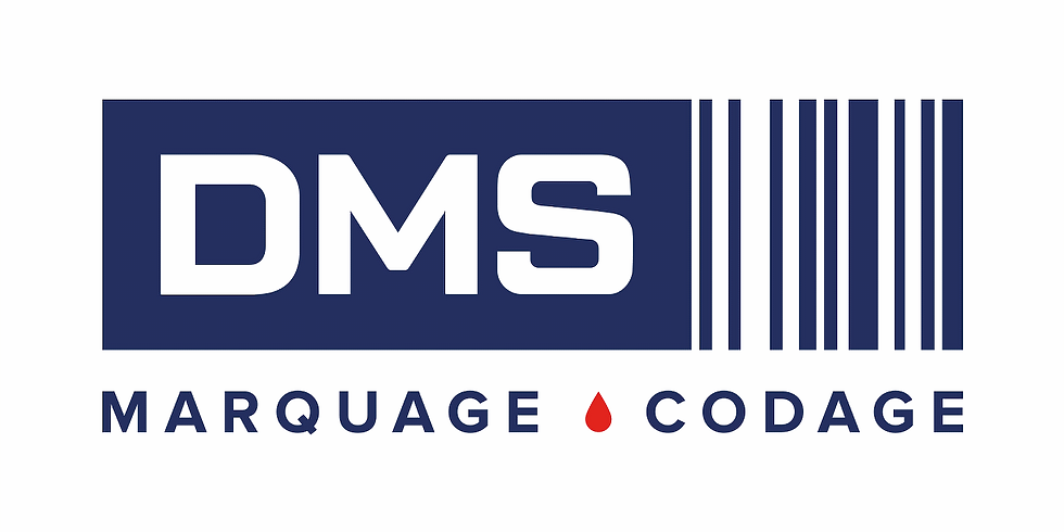 Dévoilement Toile DMS _ Unveiling Painting DMS