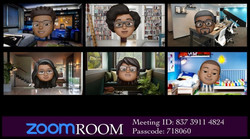 The Zoom Room