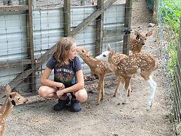 deer farm tours