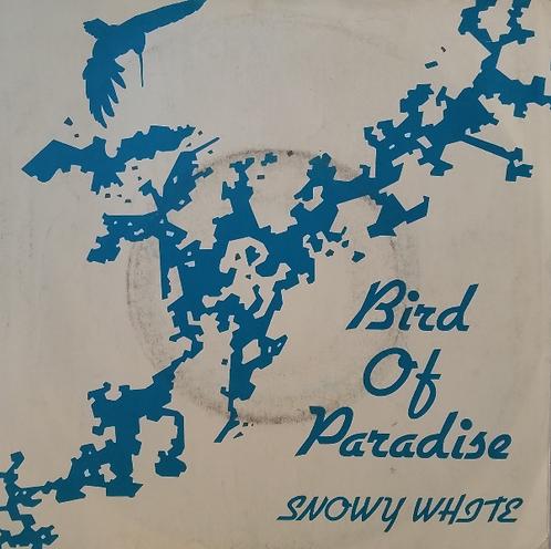 SNOWY WHITE BIRD OF PARADISE