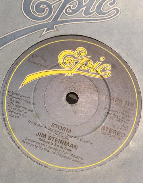 JIM STEINMAN STORM