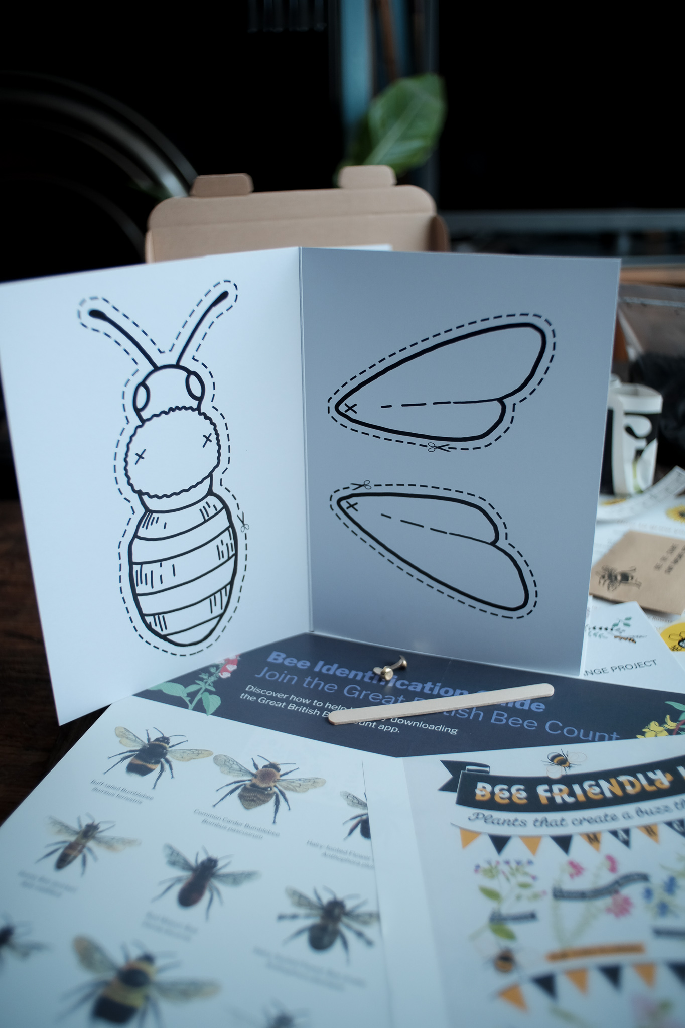 Children's Bee Kit